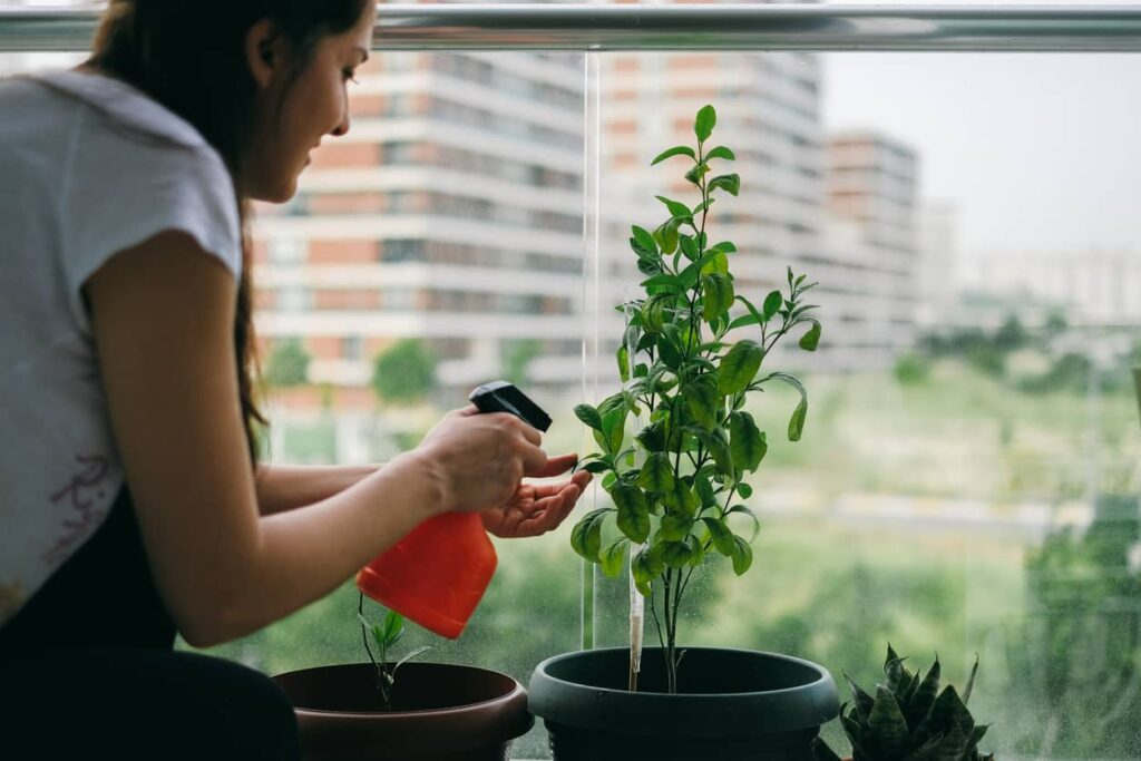 Horta caseira, mulher rega sua horta